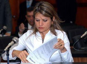 O projeto é uma iniciativa da deputada goiana Flávia Morais