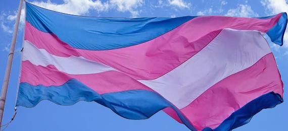 Transexual e travesti